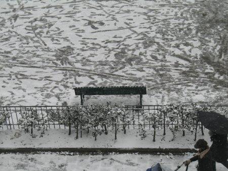 winteradam2.jpg